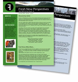 Fresh New Perspectives, the Dear Fanny Co., Inc. Newsletter